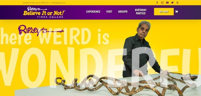 This screenshot of the home page for Ripley's Believe It Or Not! Times Square has a yellow background, a purple navigation bar with yellow and white text, and a photo of a man in a dark shirt standing next to a white exhibit table with what appears to be wooden branches growing in a spiral.