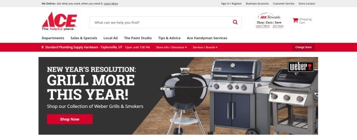 This screenshot of the home page for Ace Hardware has a gray header, a white search bar with a red logo, and white and red navigation bars above a white main section containing a black text section with white text and a red call to action button, as well as several product photos in a row showing a variety of outdoor grills in front of a wooden backdrop.