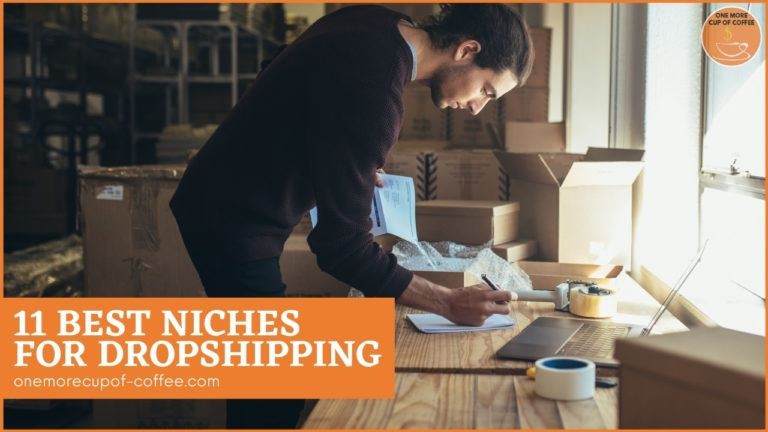 11 Best Niches For Dropshipping featured image