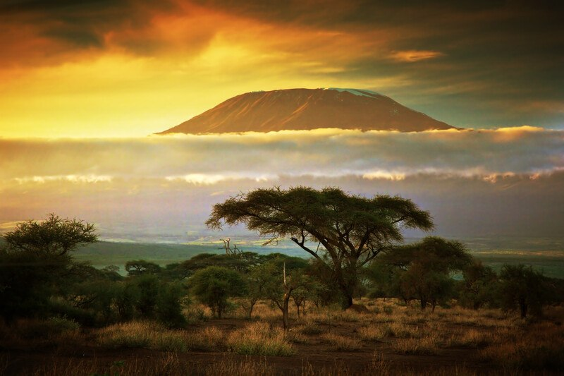 This photo shows a view of Mount Kilimanjaro and the savannah near it at sunset, representing the best African Travel affiliate programs.