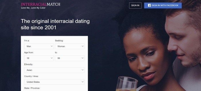 This screenshot of the home page for InterracialMatch has a photo of a white man and a black woman together on the right side of the page, a white option box on the left side of the page, a dark background throughout the page, white text above the opt in box, and a white and maroon logo in the upper left corner, with two sign in buttons in the upper right corner of the page.